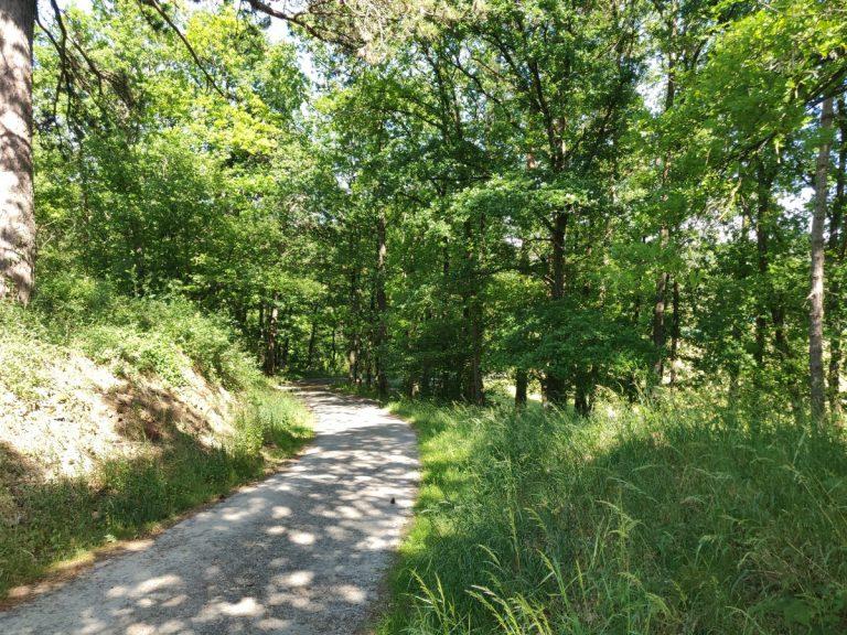 MVO-beleidsverklaring - Huur een ecologisch vakantiehuis